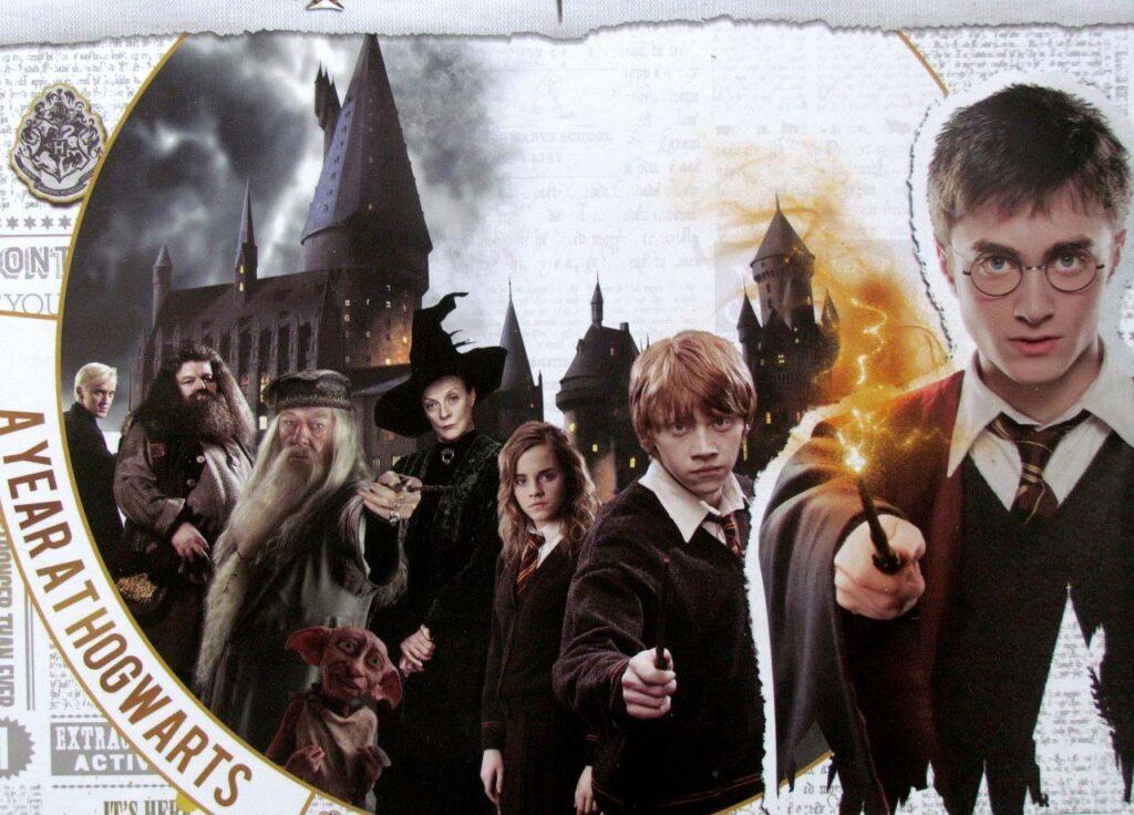 Harry Potter: Un Anno a Hogwarts